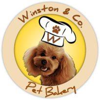 Winston and Co Logo